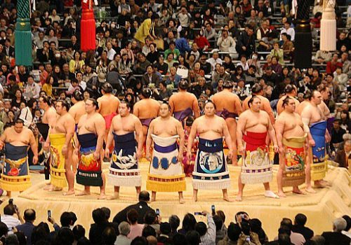 'Experience Japan' with Live Sumo!